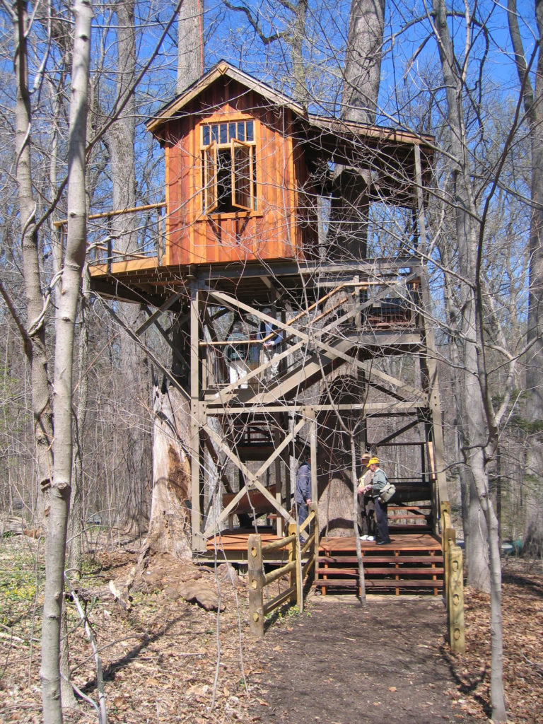 front view of the birdhouse treehouse